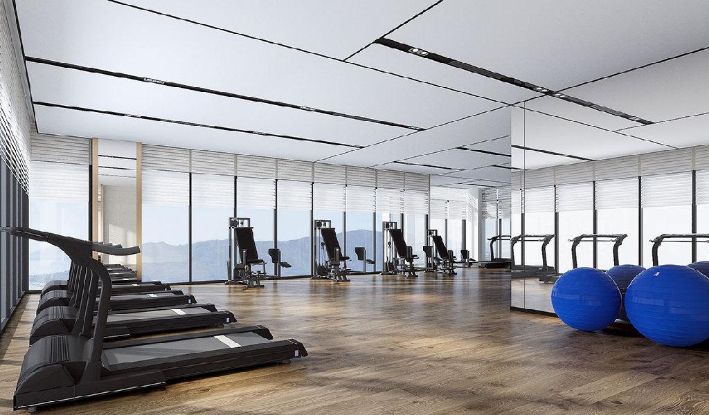 new_3d_gym